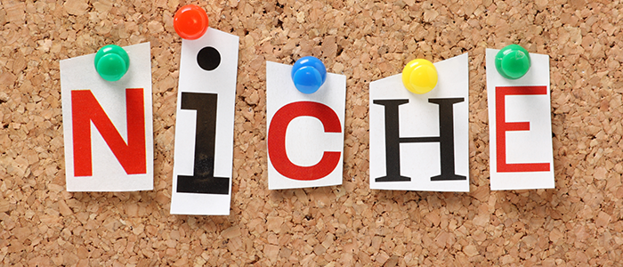 How to Pick a Niche If You Are a Novice
